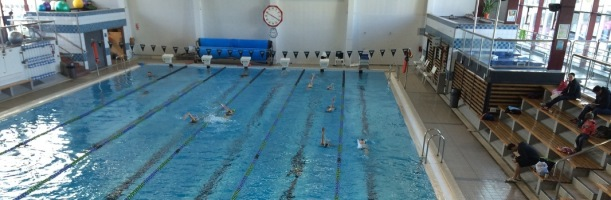 Freyberg Pool in Wellington, where I am attempting to become a local