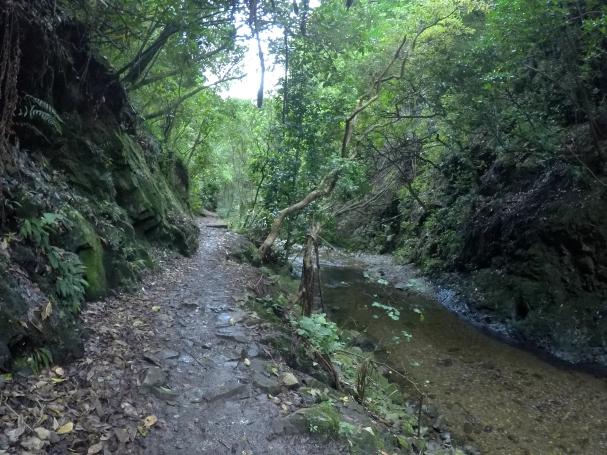 Trelissick Park